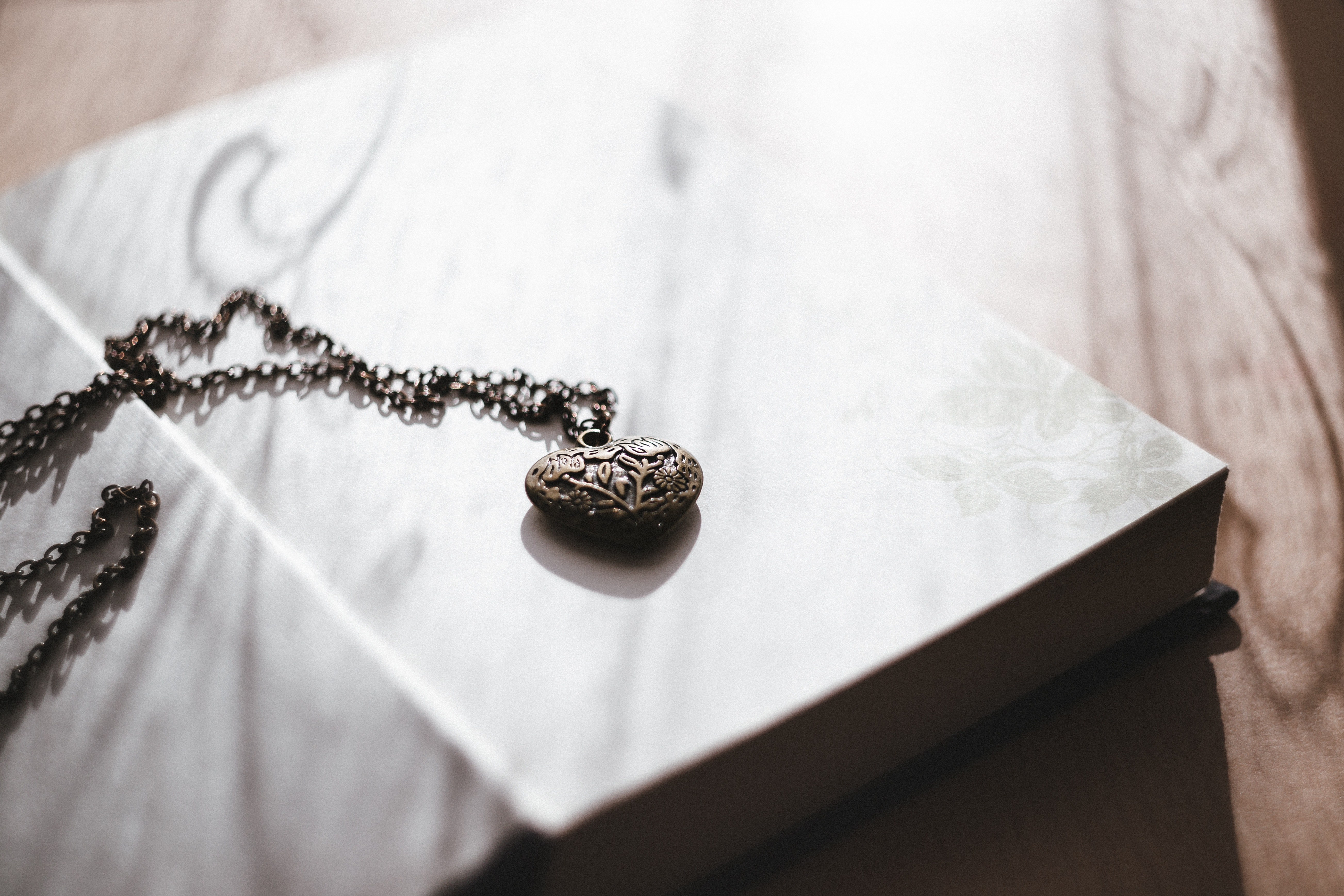 A Letter to My Heart by Fedora