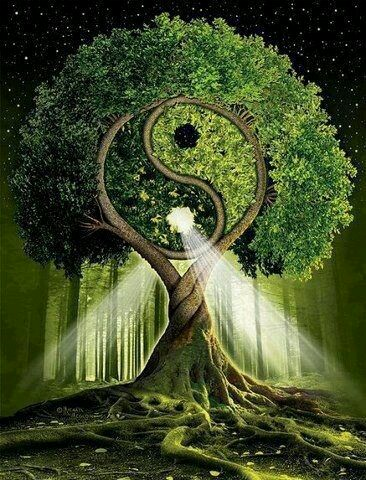 Love Desires Balance